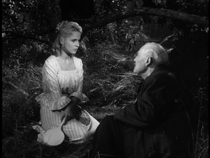 mar 20 the sense memories of wild strawberries or
